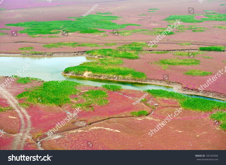 Red Wetland Stock Photo 105187604 : Shutterstock