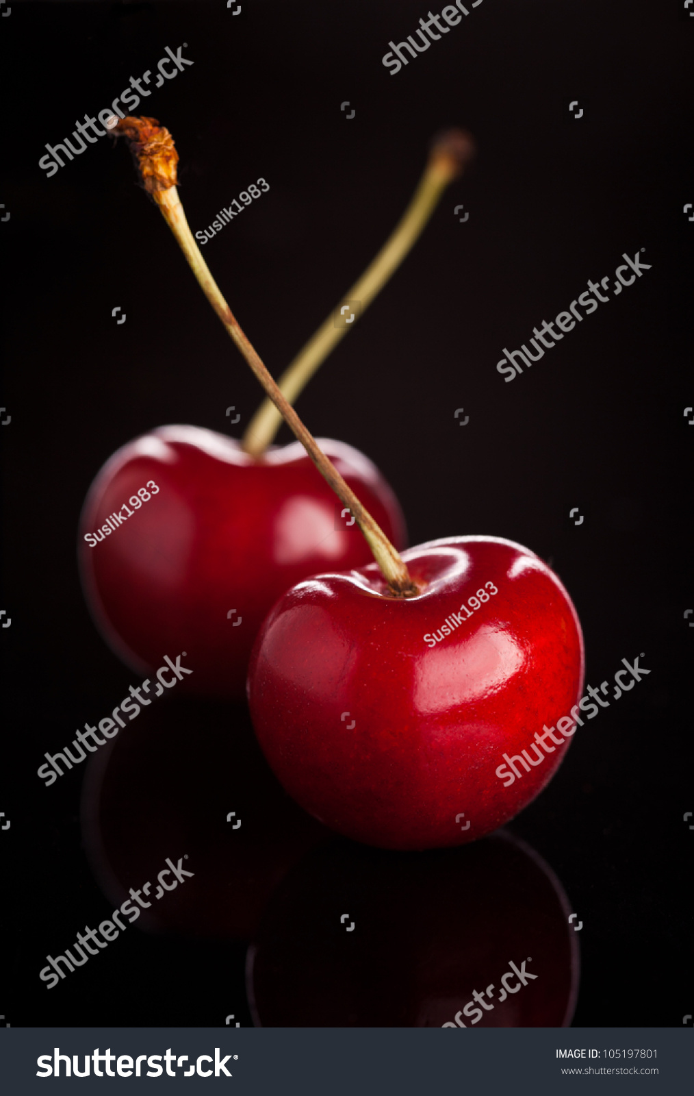 Two Cherries On Black Background Stock Photo 105197801 ...
