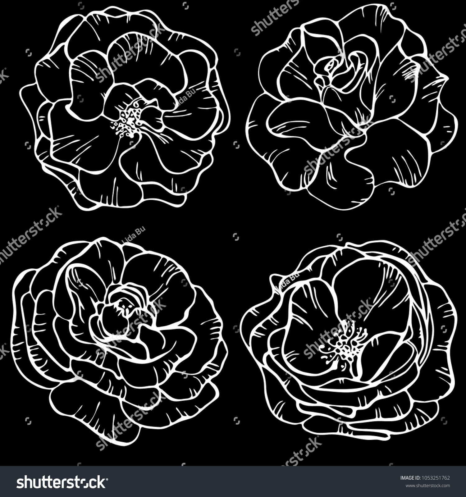 Flowers Roses On Black Background Floral Stock Vector Royalty