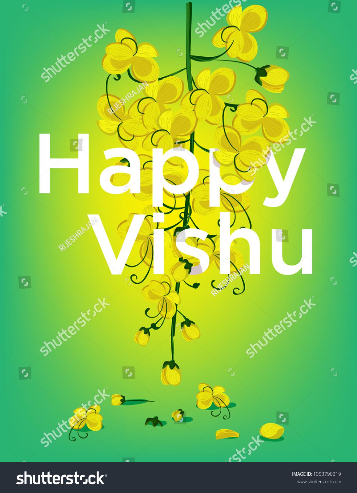 Vishu Festival Flower Stock Vector Royalty Free 1053790319