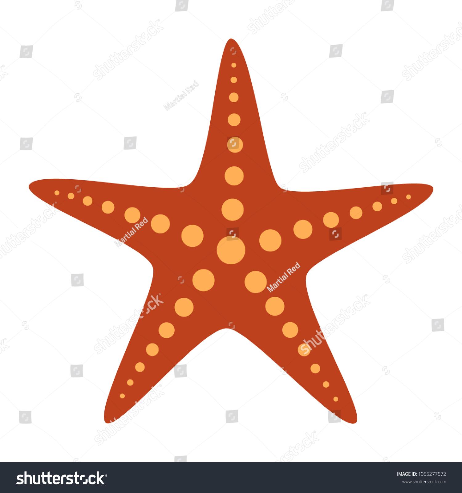 Common Orange Starfish Sea Star Fish Stock Vector HD (Royalty Free ...