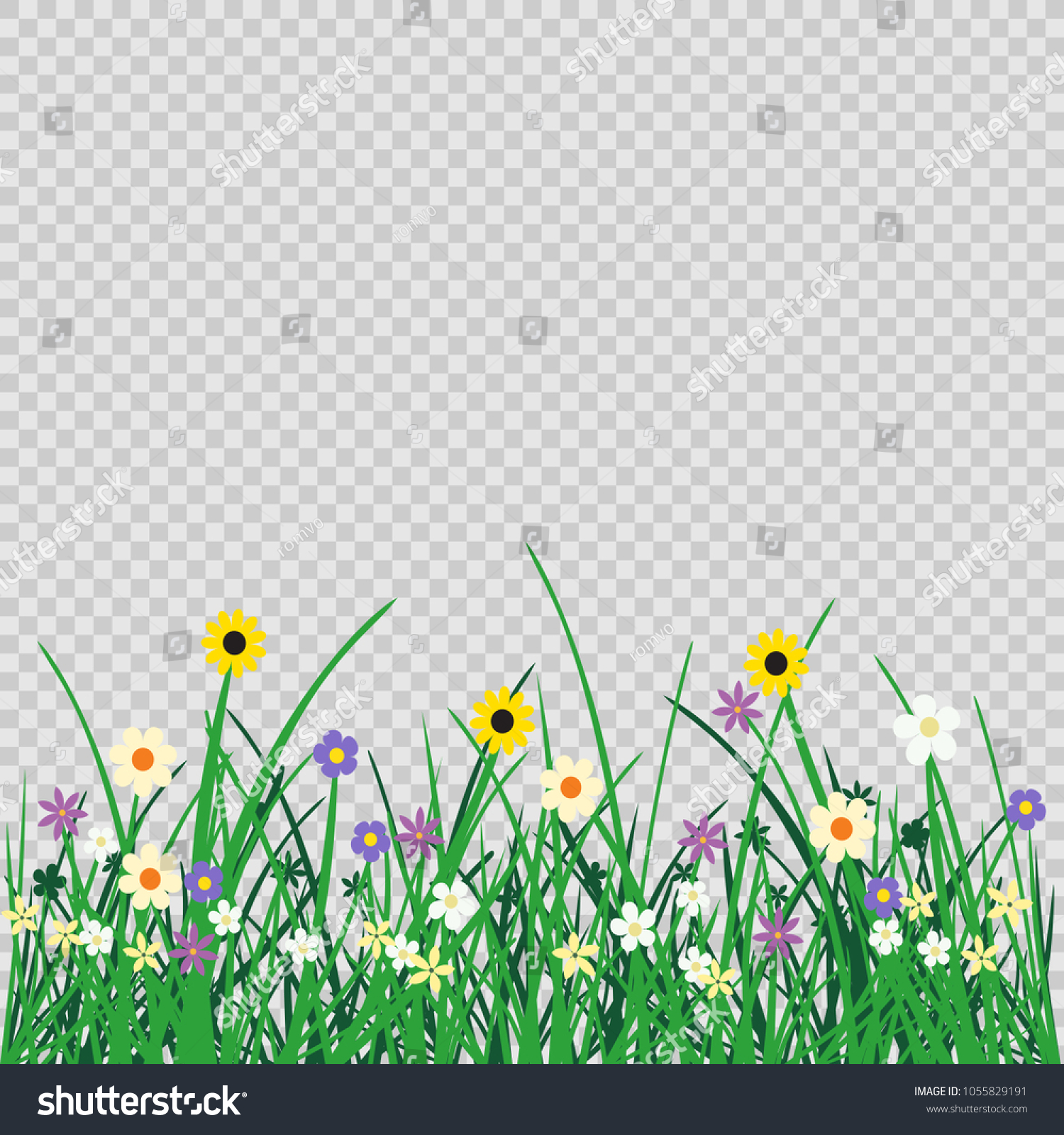 Wild Flowers Plant Grass On Transparent Stock Vector HD (Royalty ...