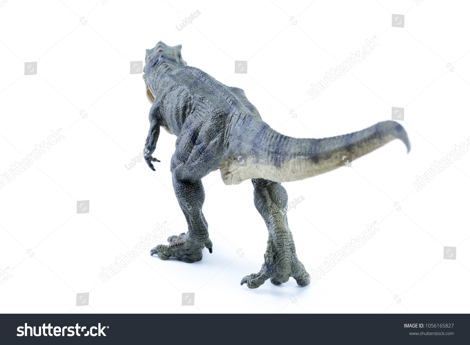 Green Long Running Tyrannosaurus Rex Realistic Stock Photo Edit Now 1056165827