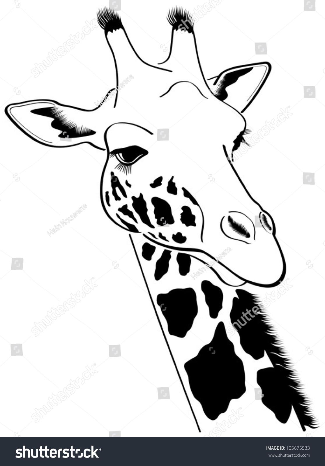Giraffe Vector Illustration Stock Vector 105675533