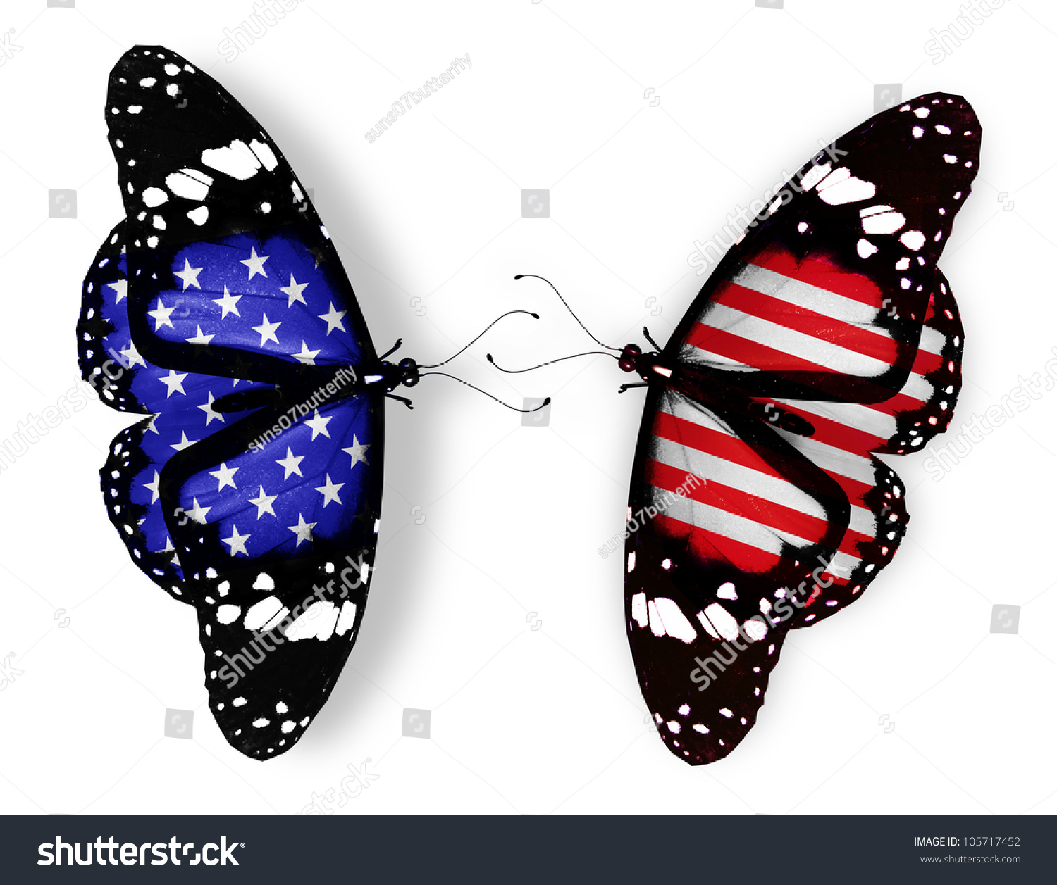 6cb7b51552d Two american flag butterflies isolated on stock illustration jpg 1500x1257 American  flag butterfly