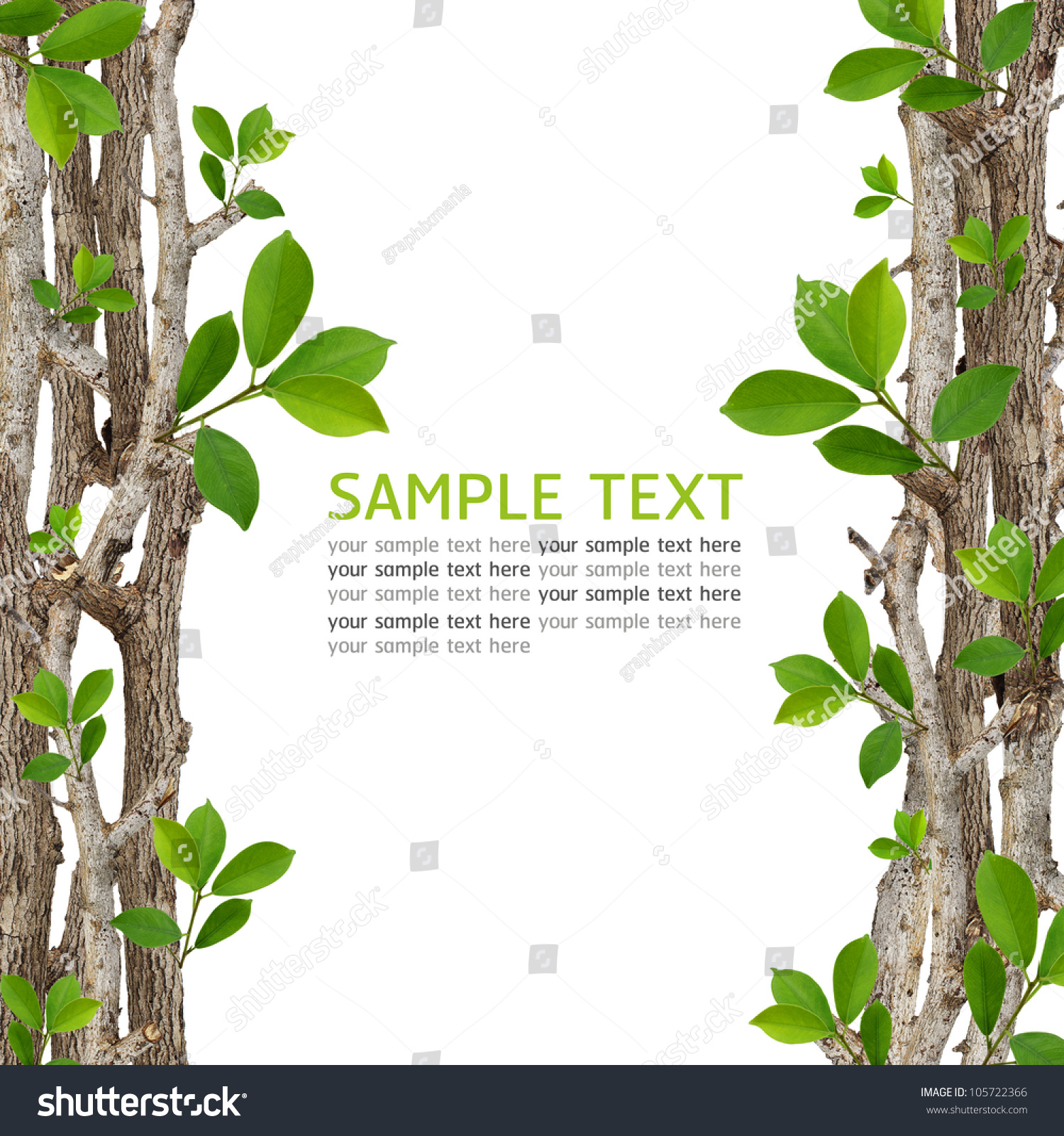 twig and green leaf frame isolated on white background