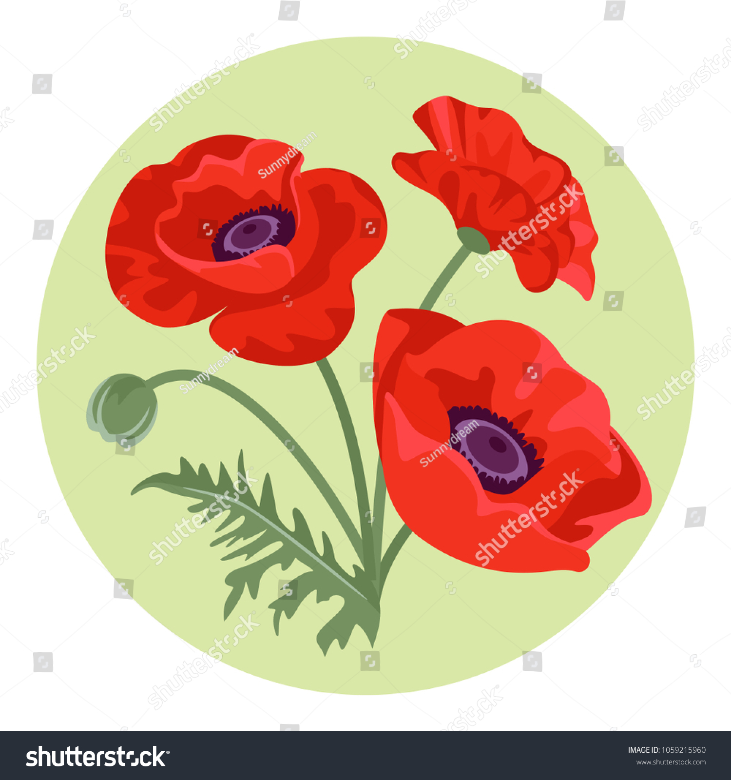 Bunch Red Blooming Poppy Flowers Vector Stock Vector Royalty Free
