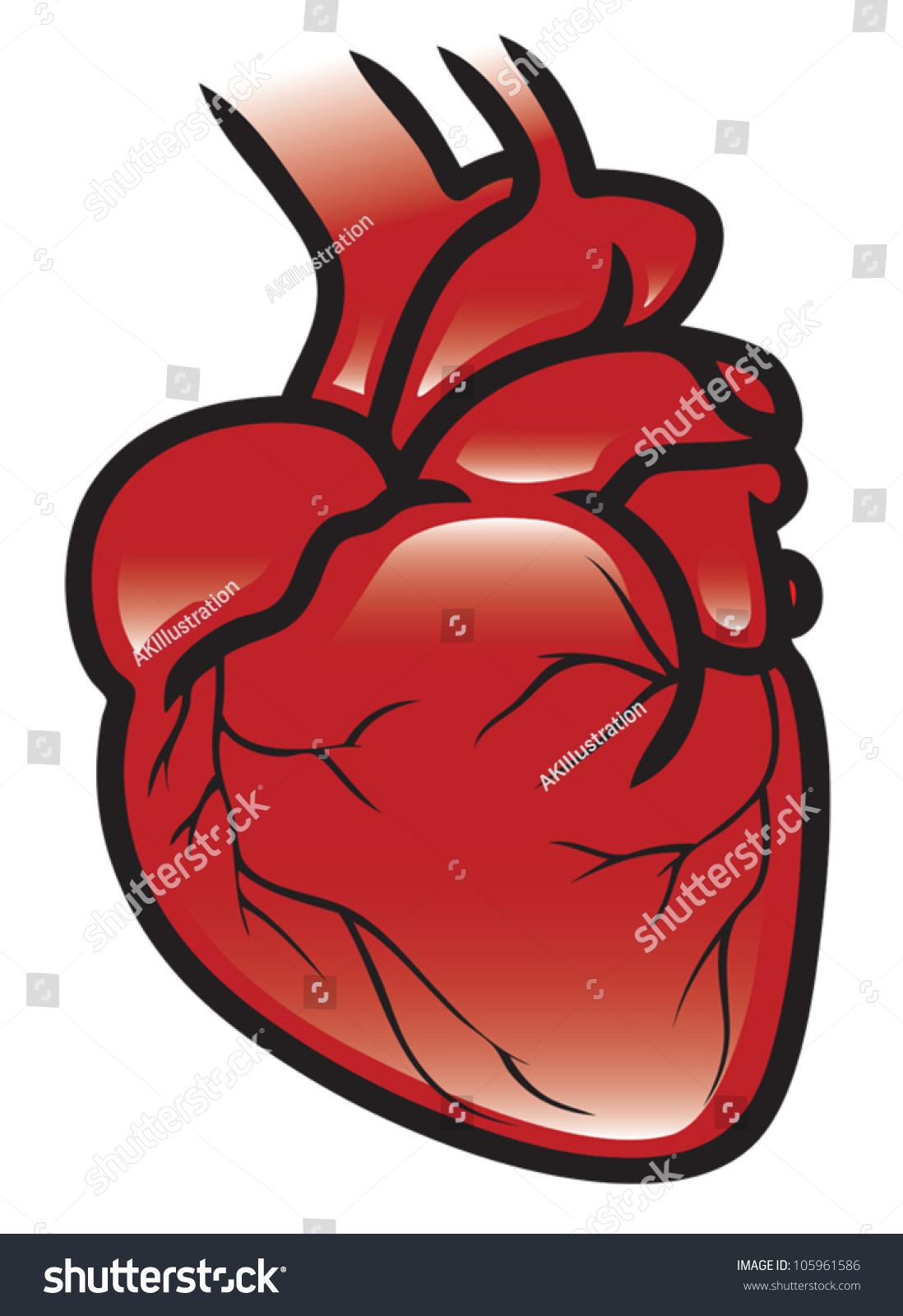 Illustration Human Heart Eps 10 Vector Stock Vektorgrafik