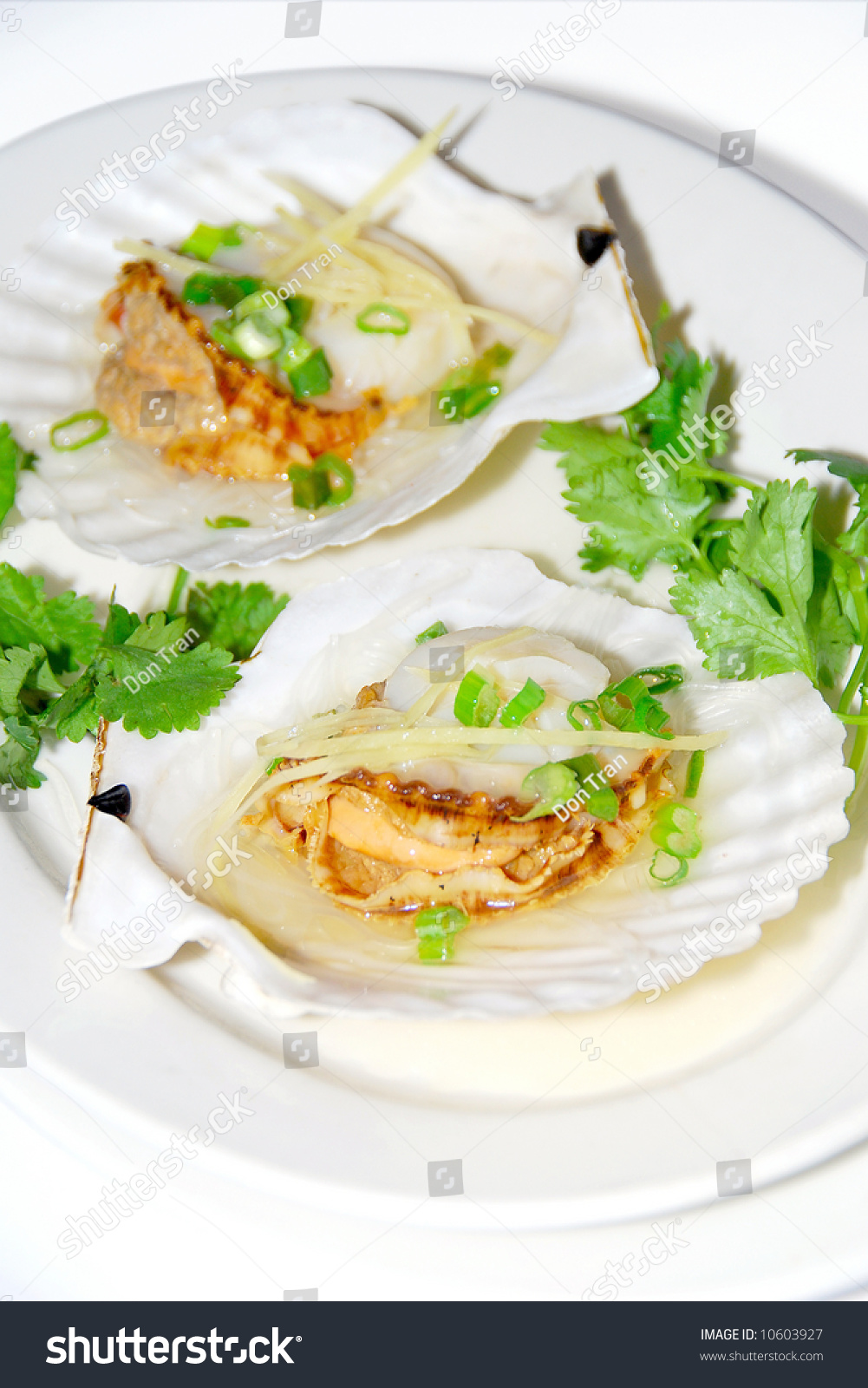Chinese Food: Two Steamed Seashell With Ginger And Green ...