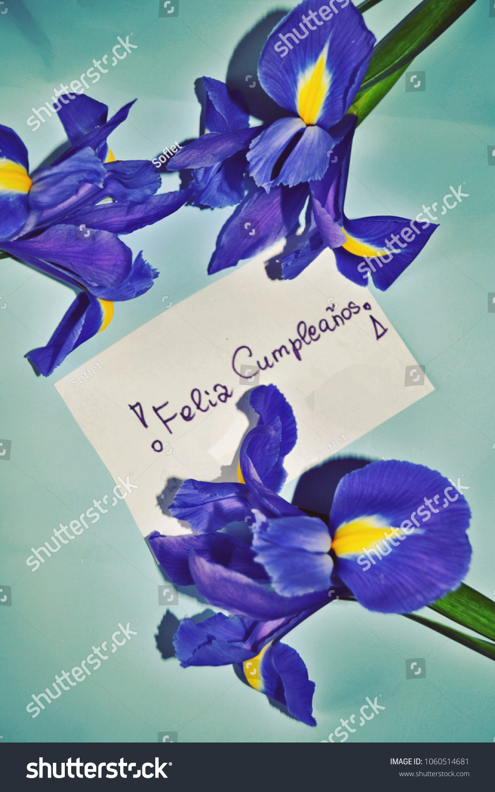 Birthday card happy birthday greetings spanish stock photo royalty birthday card happy birthday greetings in spanish feliz cumpleaos with iris flowers against m4hsunfo