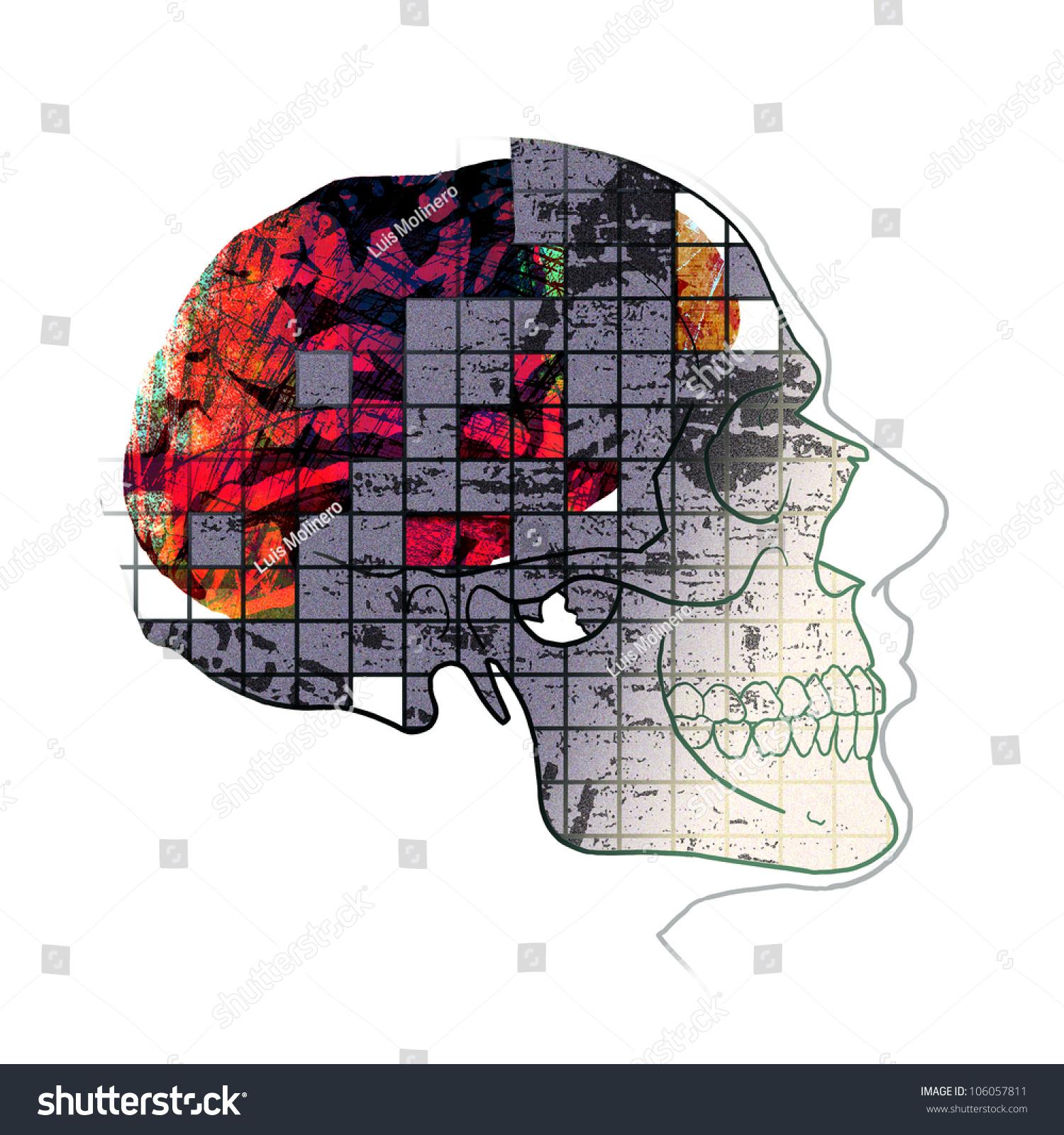 Anatomy head brain skull illustration stock illustration 106057811 head brain and skull illustration ccuart Image collections