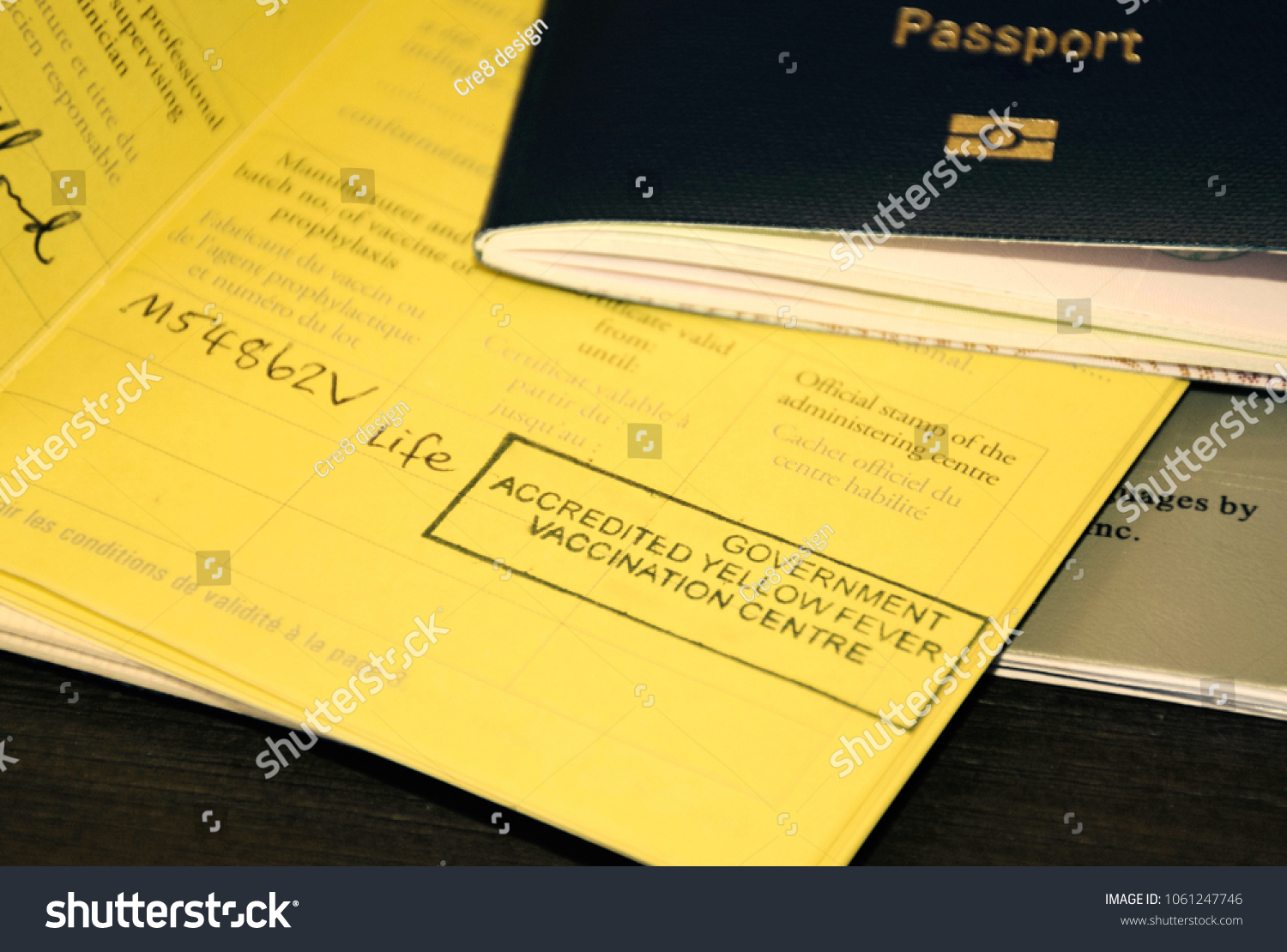 International Passport Offical Stamp On Yellow Stock Photo Edit Now