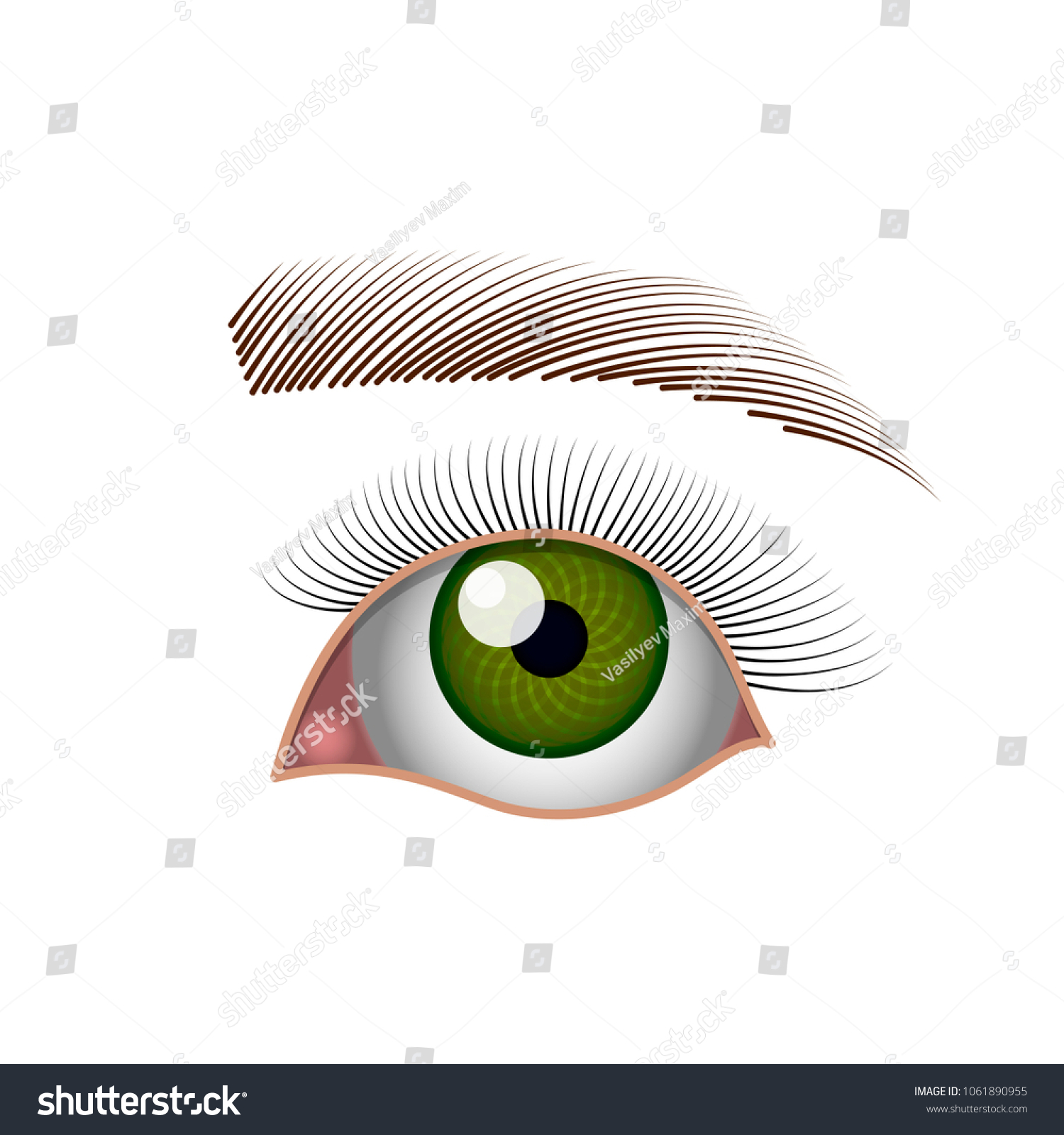 Eye Green Eye Eyelashes Eyebrow Simple Stock Vector Royalty Free 1061890955