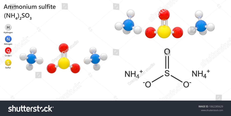 Ammonium Sulfite Ammonium Salt Sulfurous Acisaled Stock Illustration