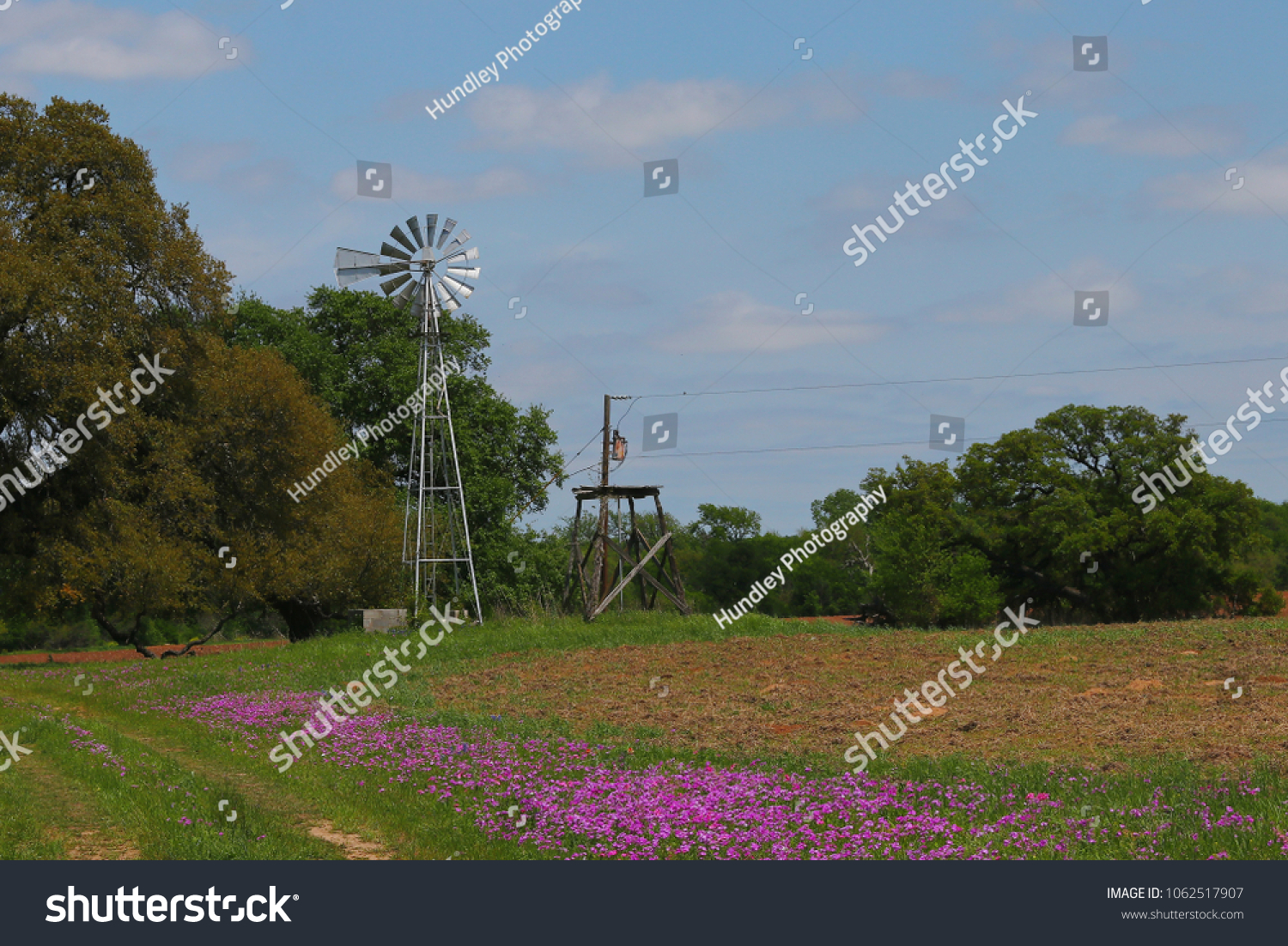 Old Windmill Spring Flowers Texas Stock Photo Edit Now 1062517907