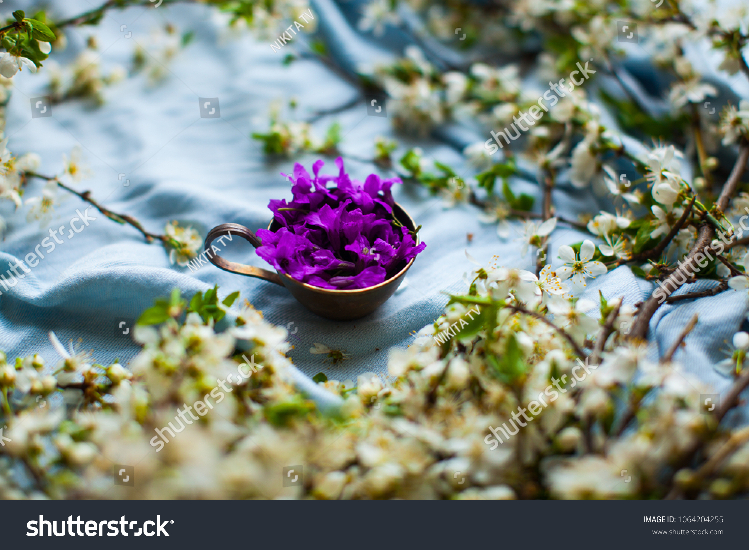 Cup metal cup cup flowers purple stock photo edit now 1064204255 cup with flowers purple flower in metal cup white izmirmasajfo