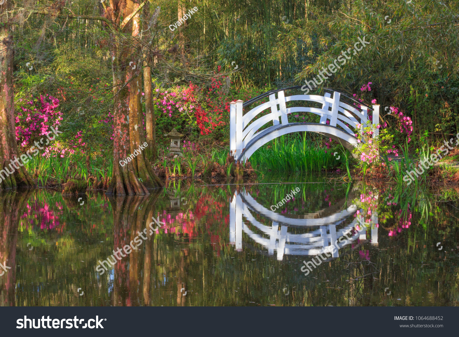 Small Ornamental Arched White Bridge Natural Stock Photo (Royalty ...