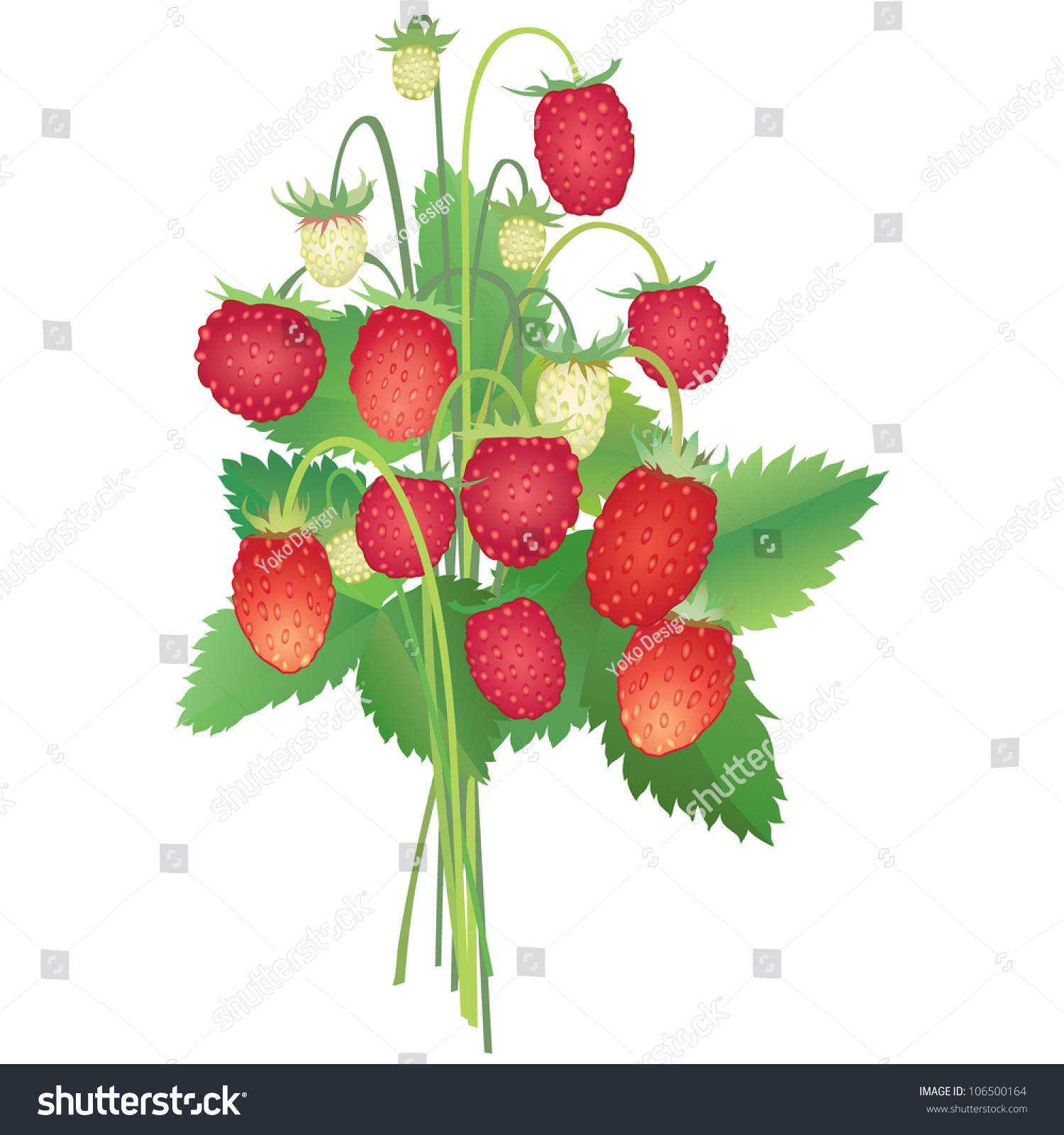 Summer Bouquet Strawberry Flower Bouquet Isolated Stock Photo Edit