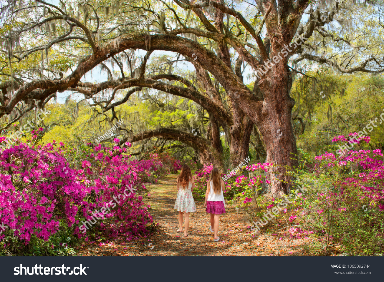 Girls Walking Garden On Weekend Trip Stock Photo (Edit Now ...