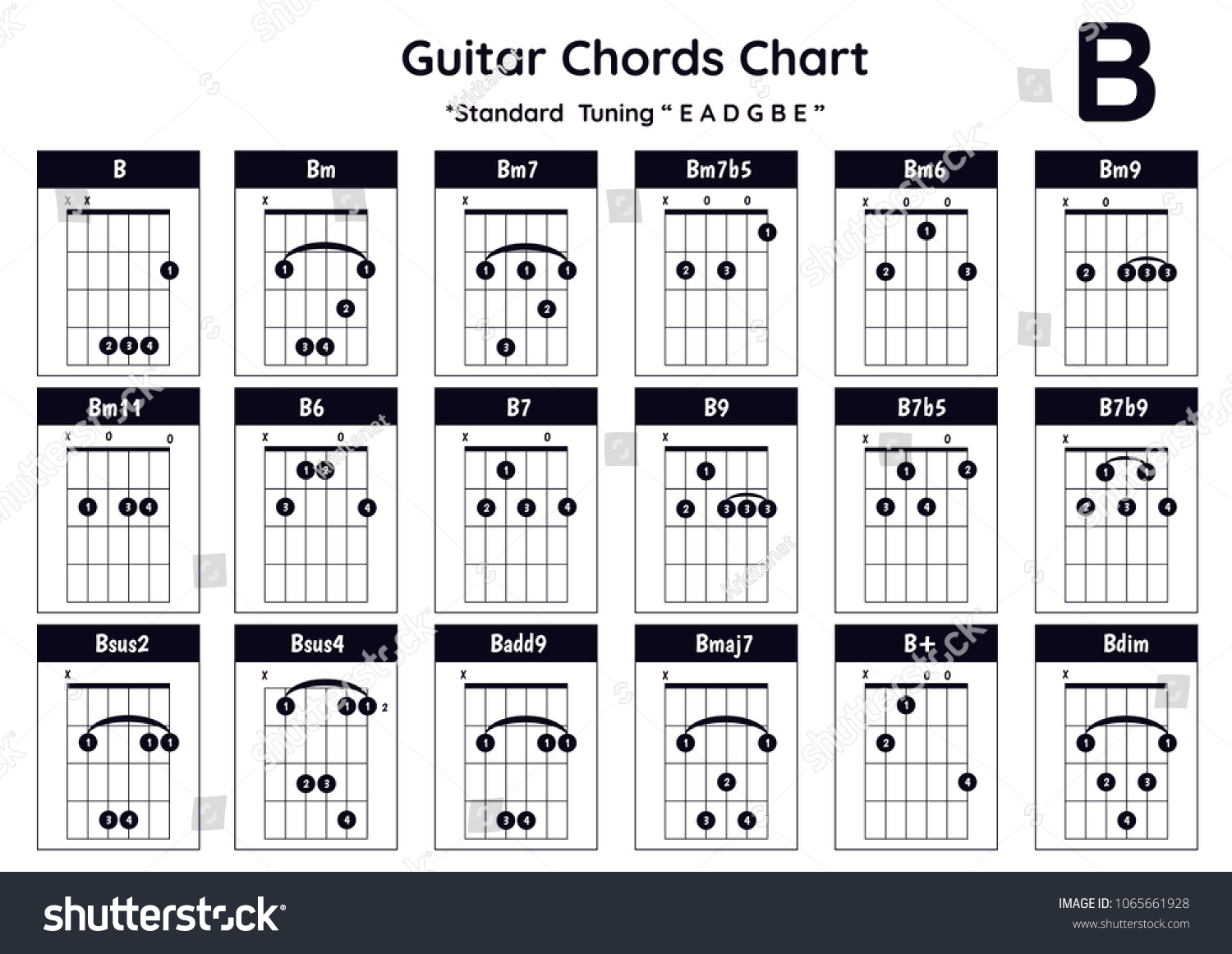 Guitar Chords B Bm Bm 7 Bm 7 B 5 Stock Vector Royalty Free