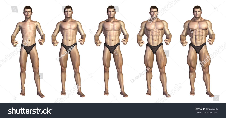 Chart Depicting Bodybuilder Gaining Muscle Mass Stockillustration