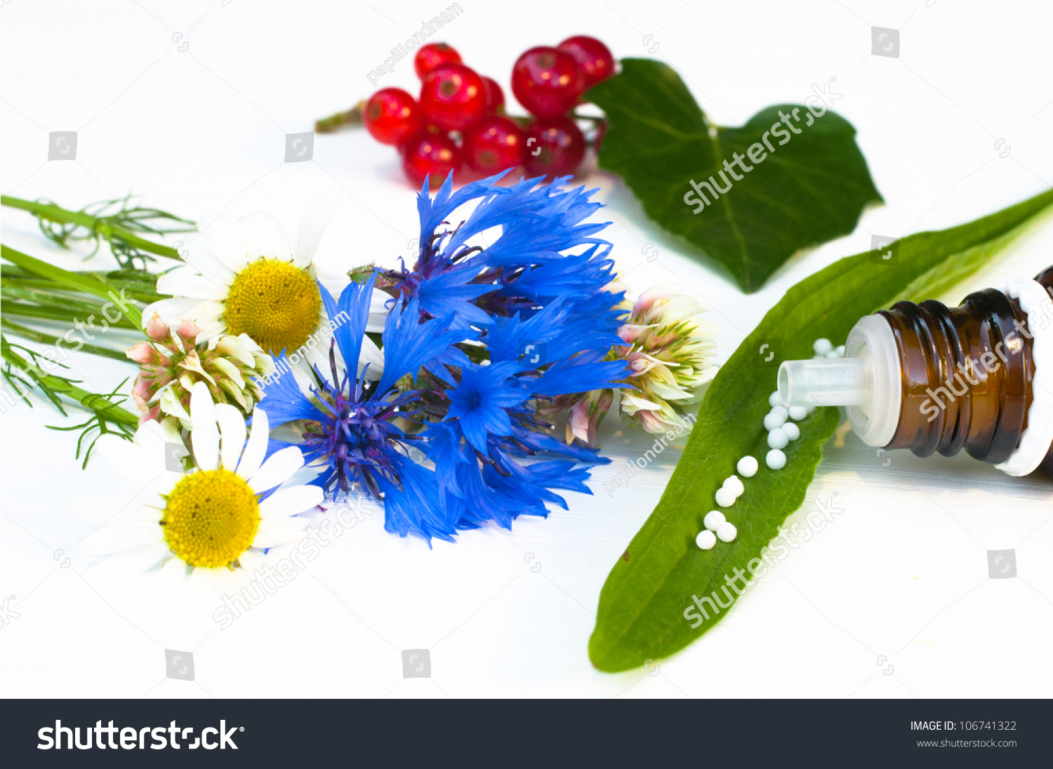 Homeopathic Homoeopathic Medicine Stock Photo (Edit Now