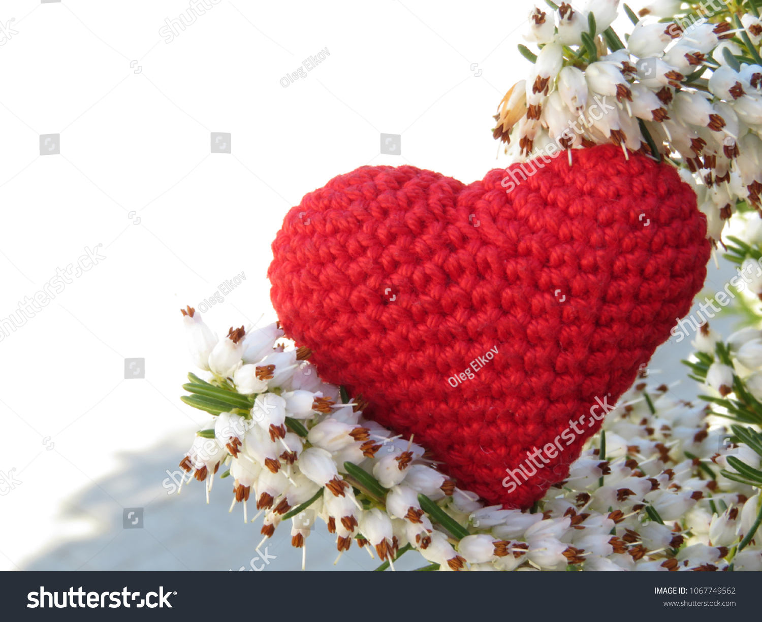 Red Knitted Heart White Heather Flowers Stock Photo Edit Now