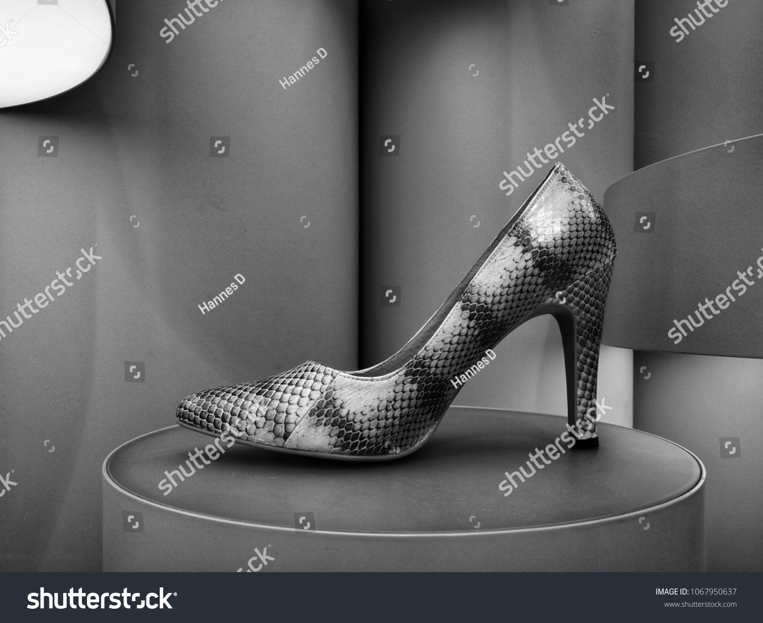 Black and white picture of classy snake skin high heel shoe on display