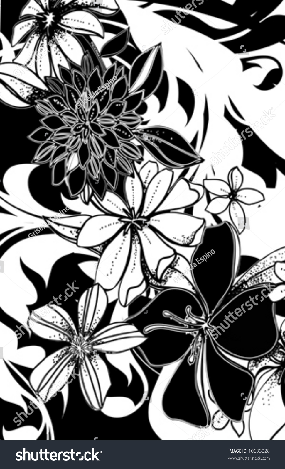 Black White Handdrawn Floral Print Whimsical Stock Vector Royalty
