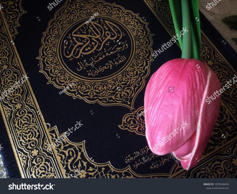 Holy Al Quran Pink Tulip Flower Stock Photo (Edit Now