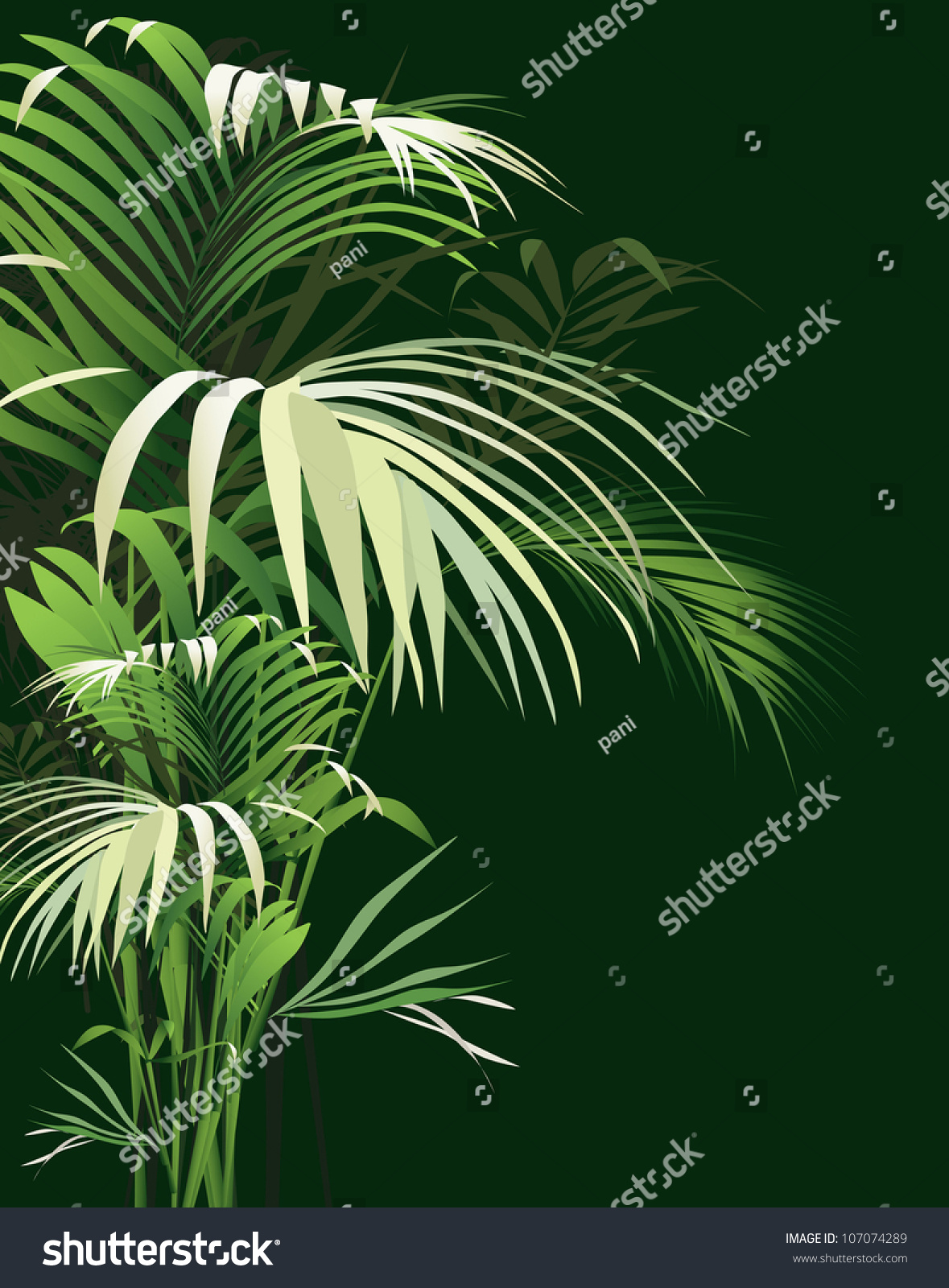 Tropical Plants Vector Drawing Nature 107074289
