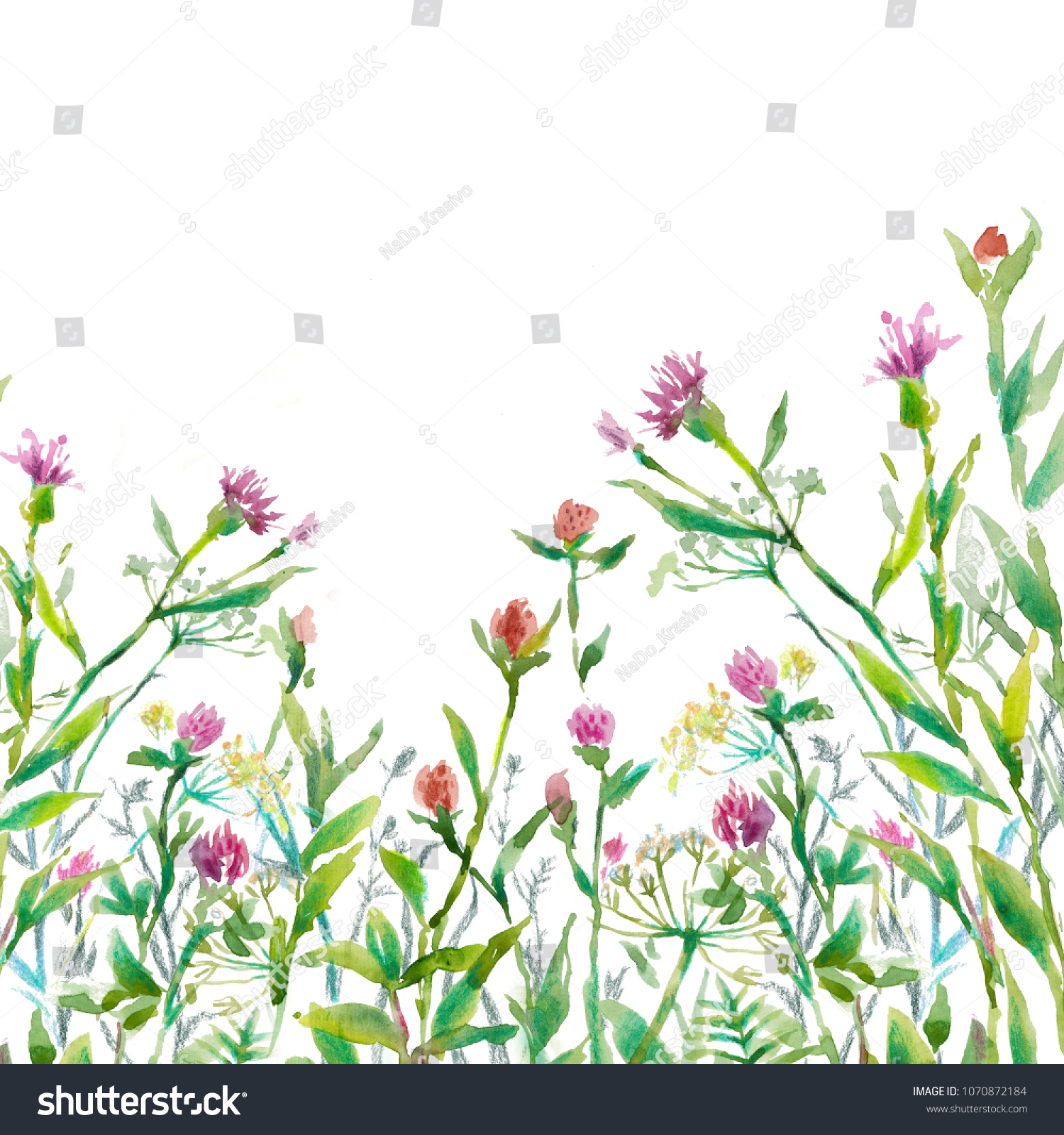 Royalty Free Stock Illustration Of Herbs Green Grass Pink Flowers On