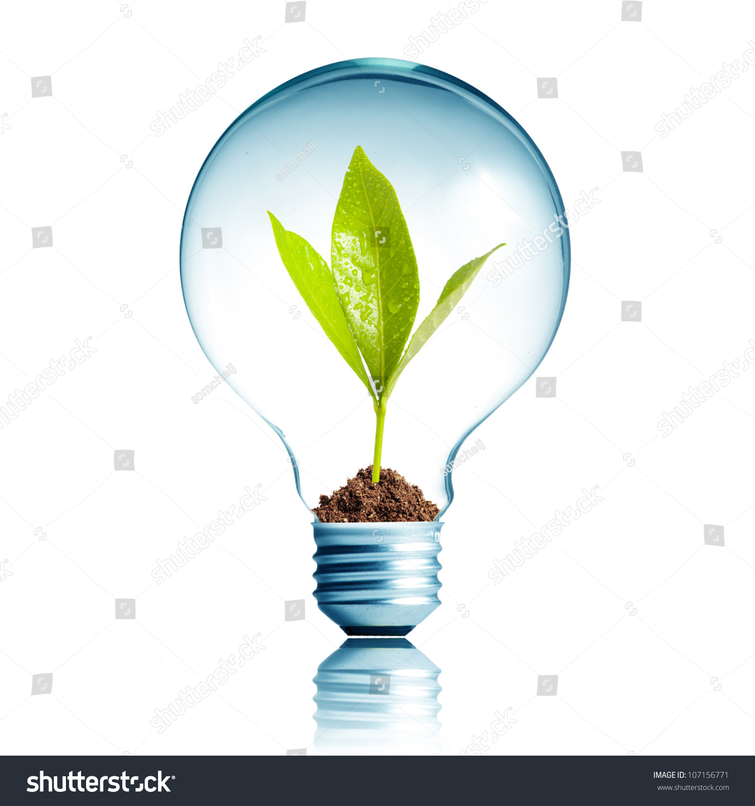 Light bulb soil green plant sprout stock photo 107156771 for Soil and green