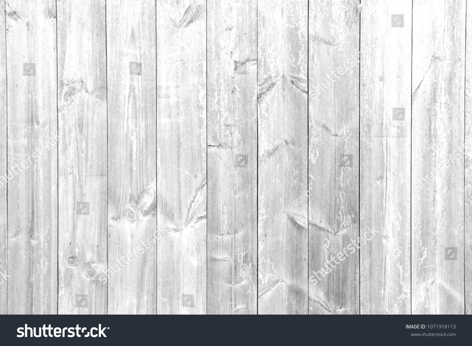 Light White Wood Panel For Background And Texture