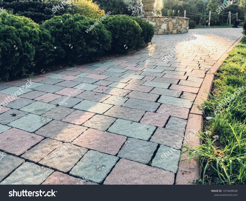 Garden Brick Pavers Tile Plants Evergreen Stock Photo (Edit Now ...