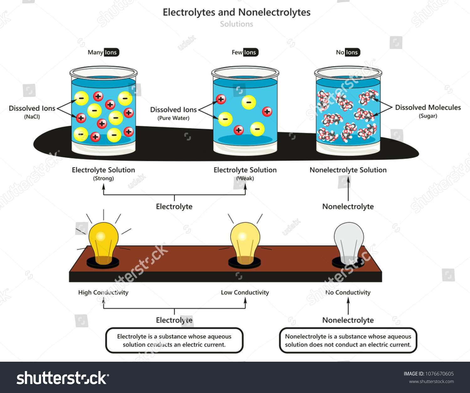 Electrolyte Nonelectrolyte Solutions Infographic Diagram Showing Stock Illustration 1076670605