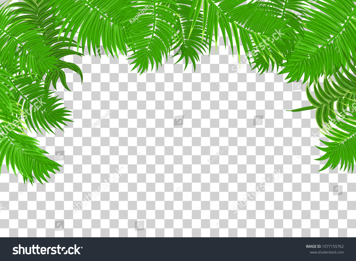 web summer jungle frame banner green stock vector royalty free
