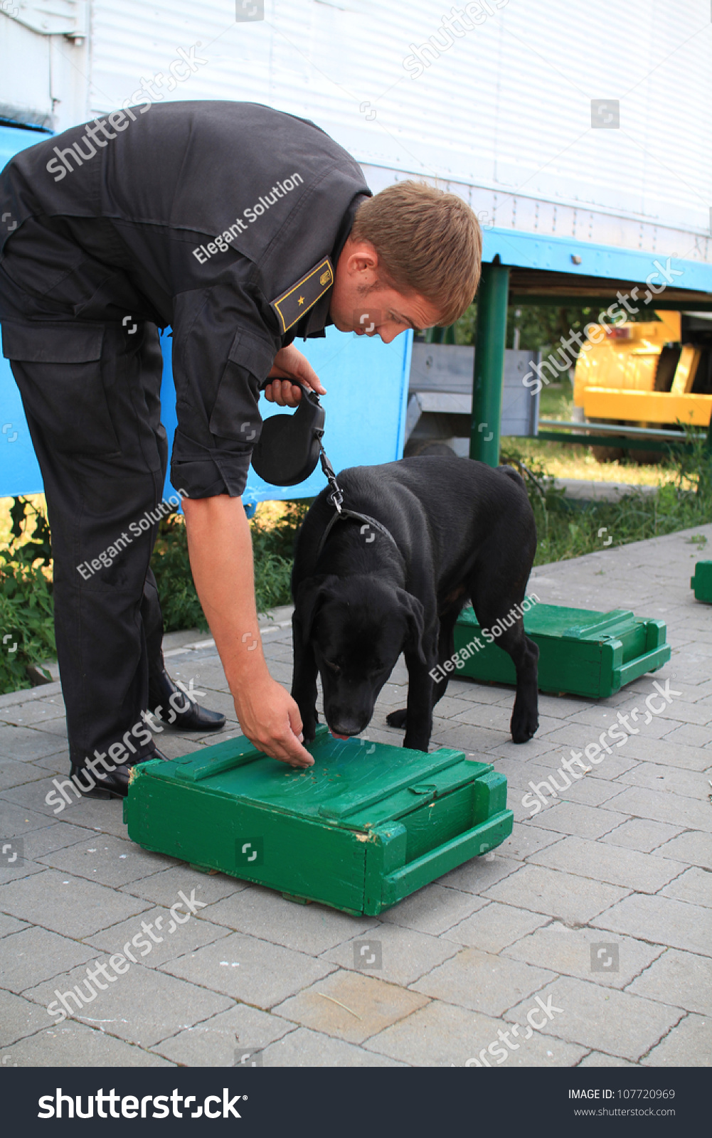 how to become a drug dog handler canada