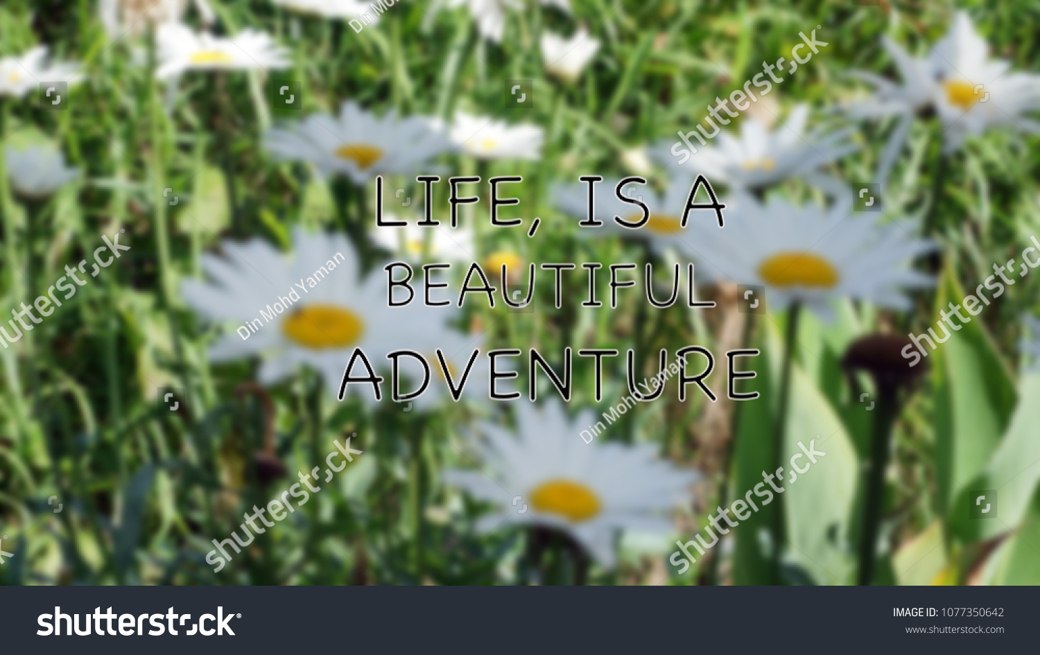 Life quotes life beautiful adventure on stock photo edit now life quotes life is a beautiful adventure on blurry daisy flowers izmirmasajfo