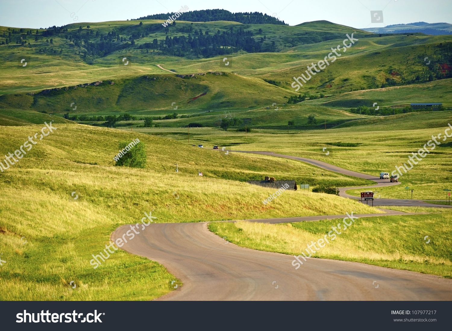 South dakota landscape custer park near stock photo for Nearby landscapers