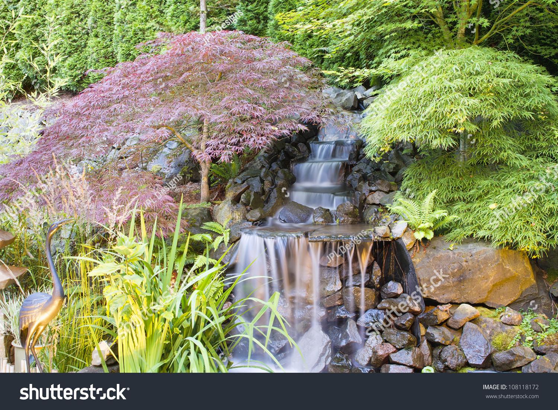 Backyard Waterfall Pond Japanese Maple Trees Stock Photo