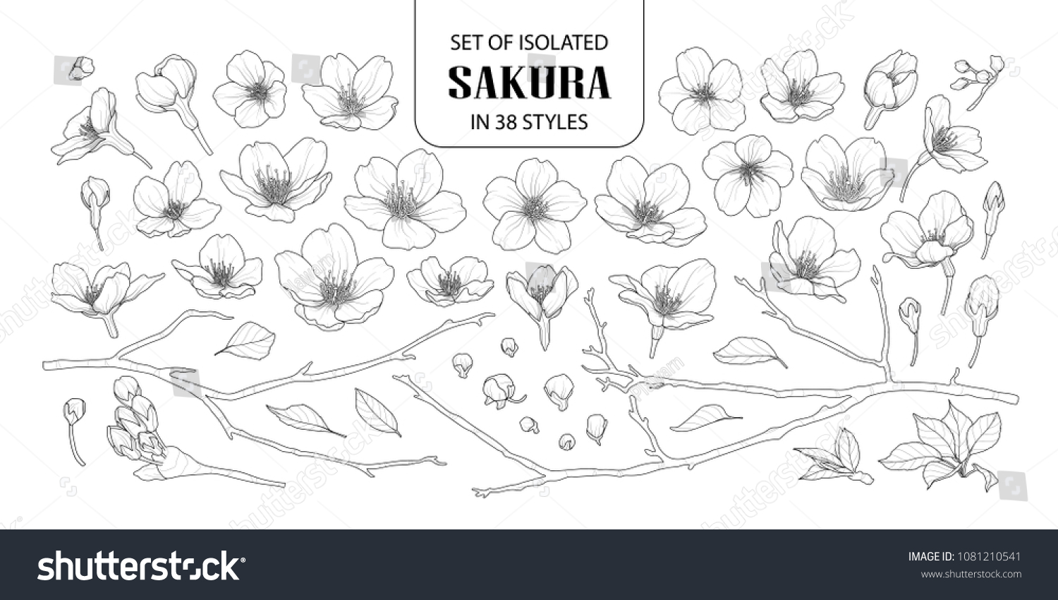 Set of isolated sakura in 38 styles. Cute hand drawn flower vector illustration in black outline and white plane on white background.