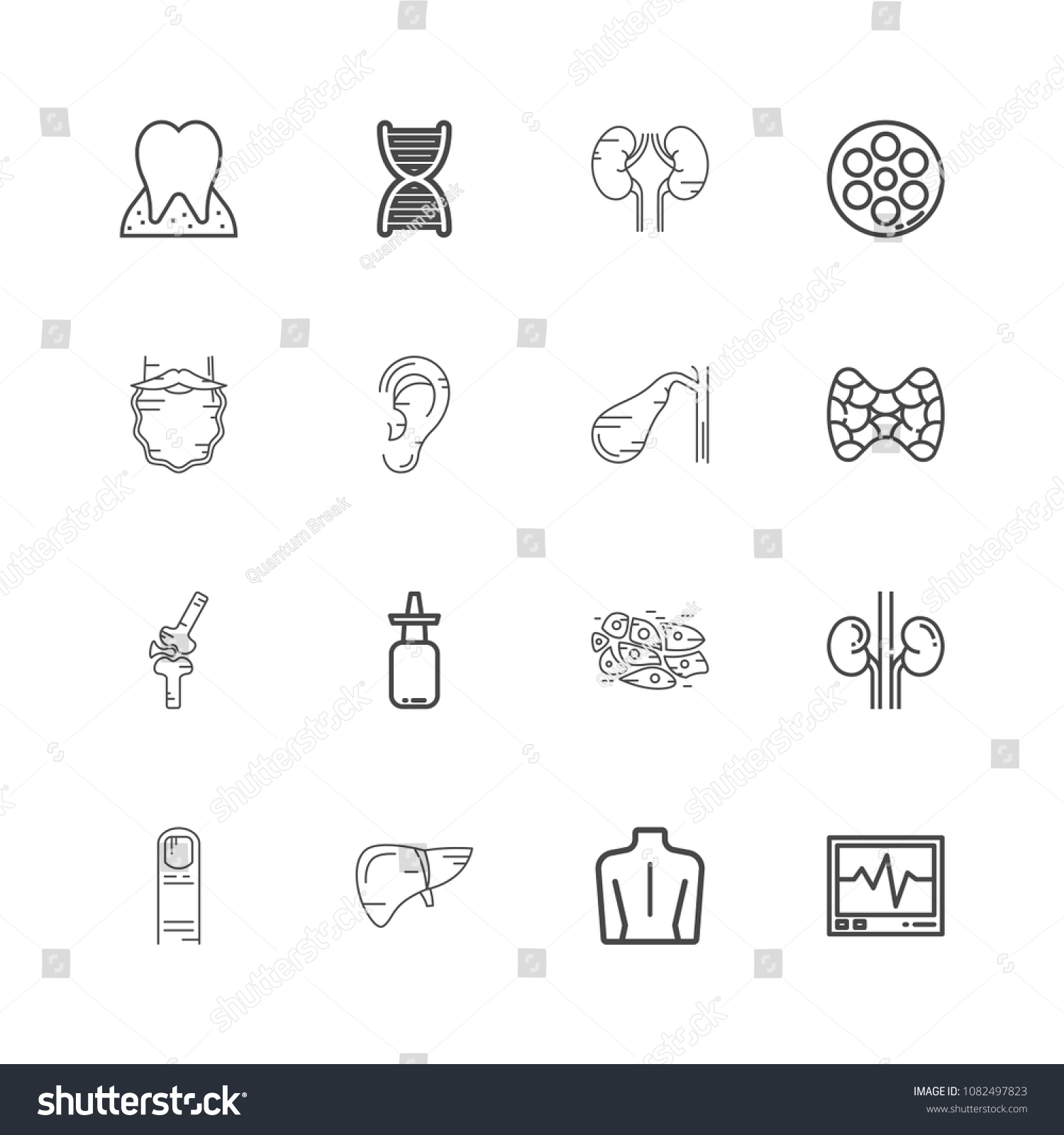 Human Body Parts Linear Icons Set Stock Vector 1082497823 - Shutterstock