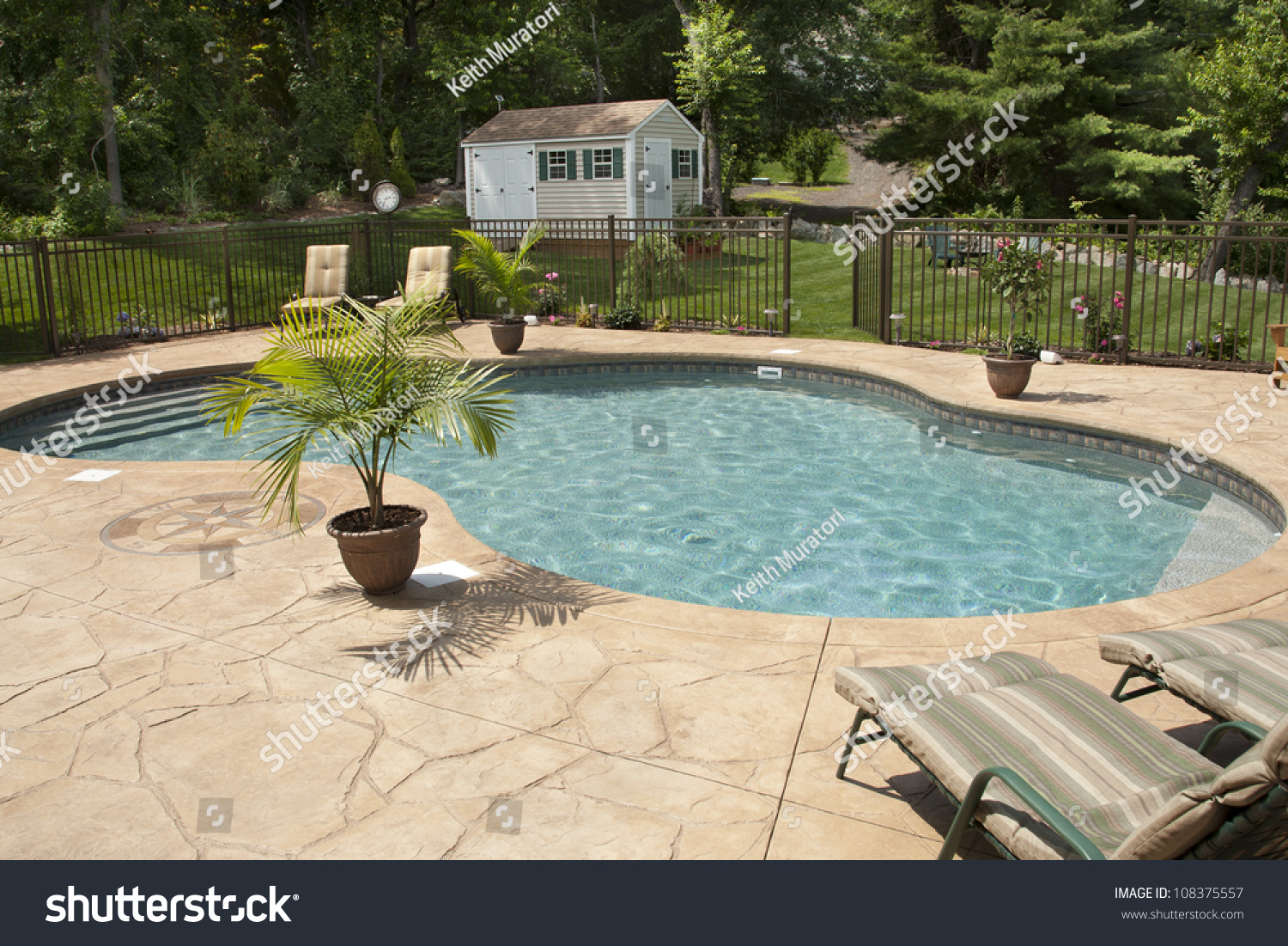 Luxury Salt Water Pool And Patio In A Residential Backyard