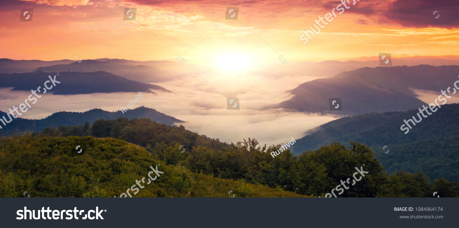 panoramic morning scene, beauty summer foggy  image, attractive view of valley covered  fog on background gold sunlight, fantastic mountains landscape in Europe, Carpathians, Ukraine