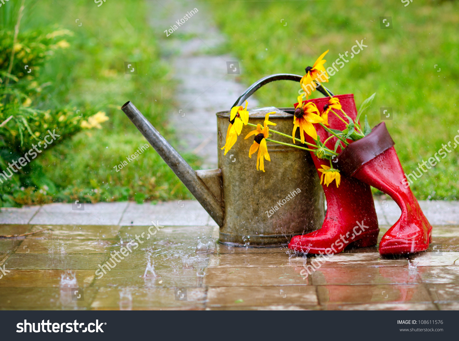 Red Rain Boots Watering Can Flowers Stock Photo 108611576