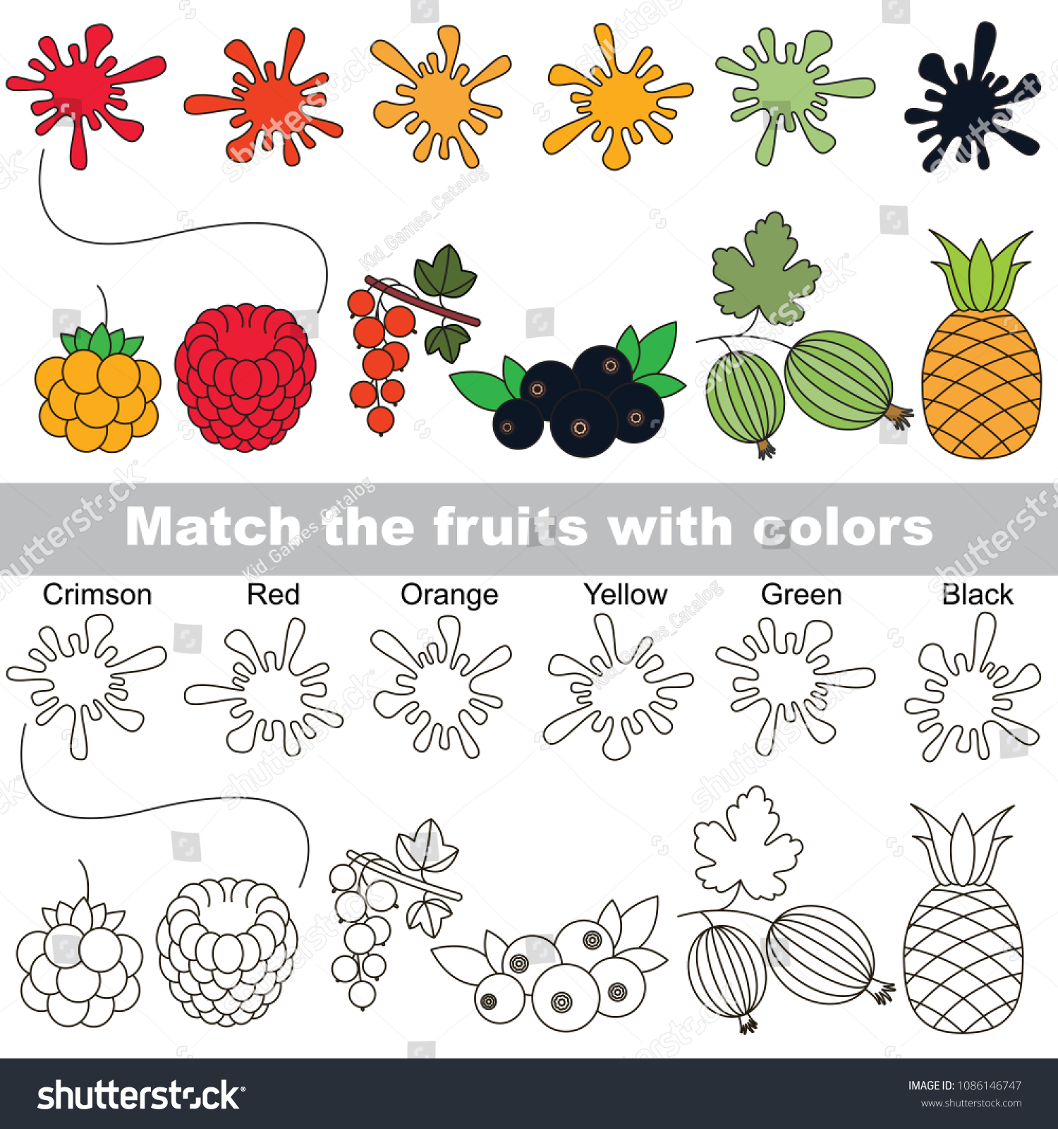 Berry Rainbow Colors Set Find Appropriate Stock Vector