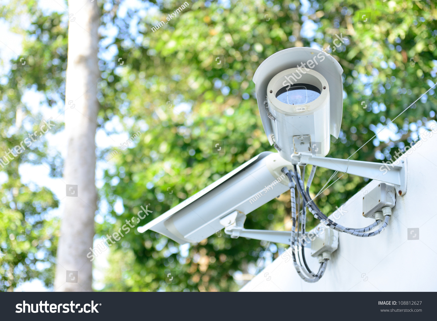Security camera on fence next jungle stock photo