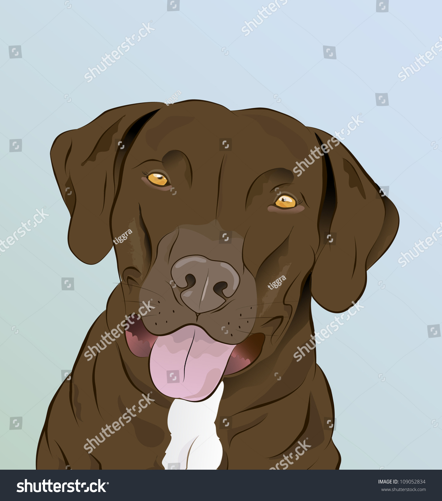 Stock Vector Louisiana Catahoula