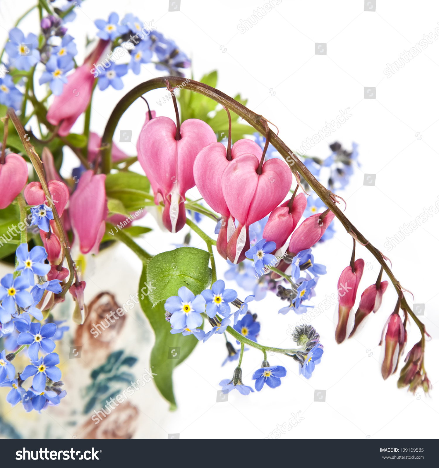 Bouquet Bleeding Hearts Forget Me Nots Stock Photo (Royalty Free ...